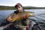 browntrout patagonia