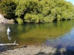 fliegenfischen rio pico