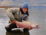 lachsfischen rio serrano chile