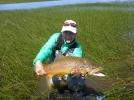 trophy brown trout