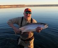 trophy trout