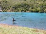 rio serrano lsa